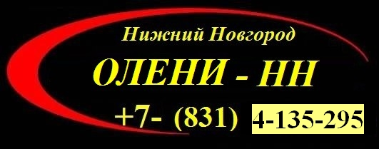 taxi russia +7(831)4-135-295
